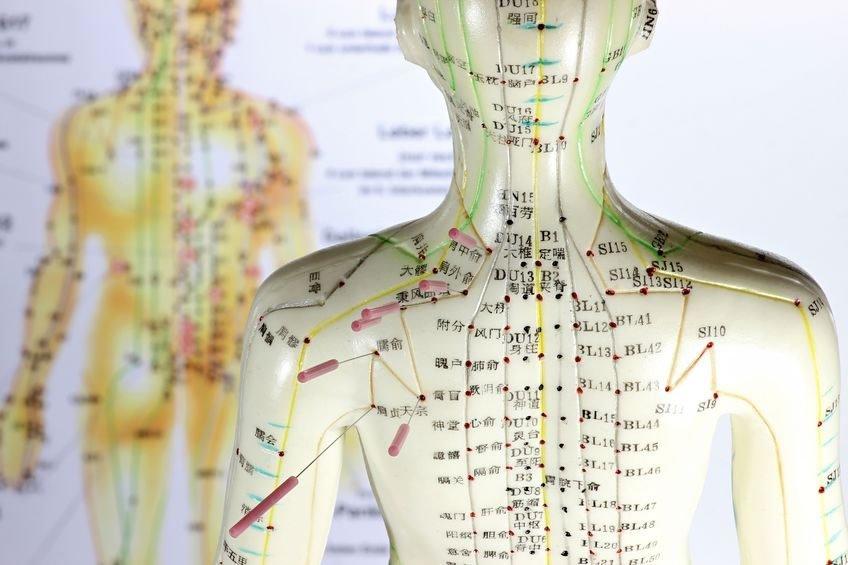 Acupuncture Olympia, Jim Stegenga